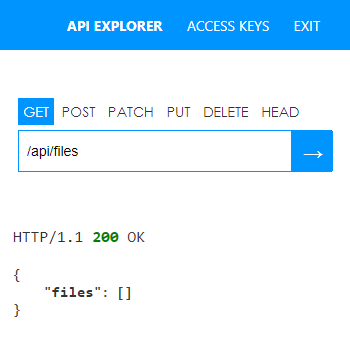 API Result showing empty files section